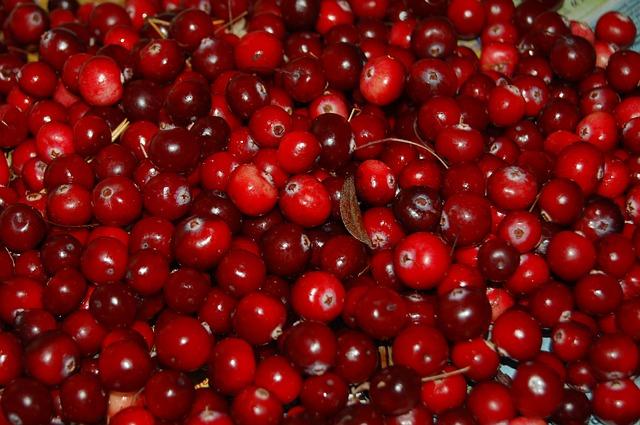 Les canneberges ou cranberry, de puissants alliés anti oxydants