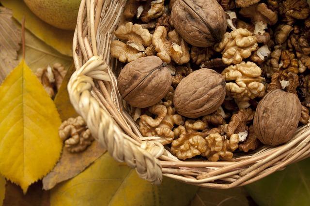 Les noix, des alliés stimulant pour la mémoire